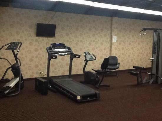 Howard Johnson Plaza Kansas City Hotel And Conference Center: Fitness Room - dreary but decent cardio equipment