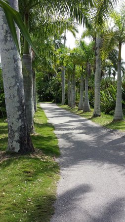 Naples Zoo at Caribbean Gardens: A walkway in the zoo