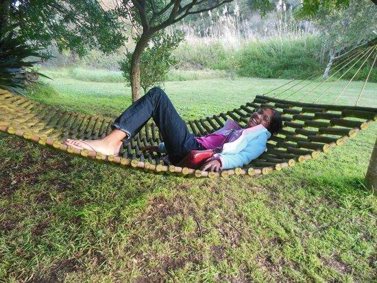 Bitou River Lodge: Enjoying the hammock
