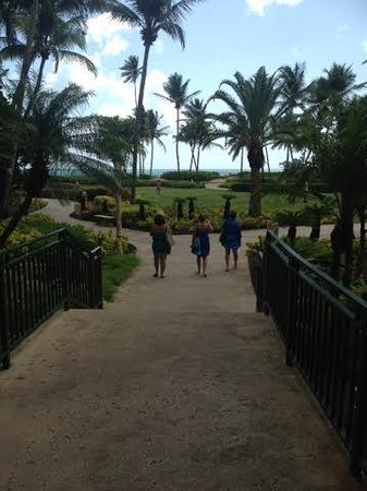 Wyndham Grand Rio Mar Puerto Rico Golf & Beach Resort: Friends...