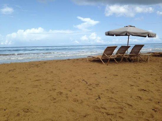 Wyndham Grand Rio Mar Puerto Rico Golf & Beach Resort: The beach