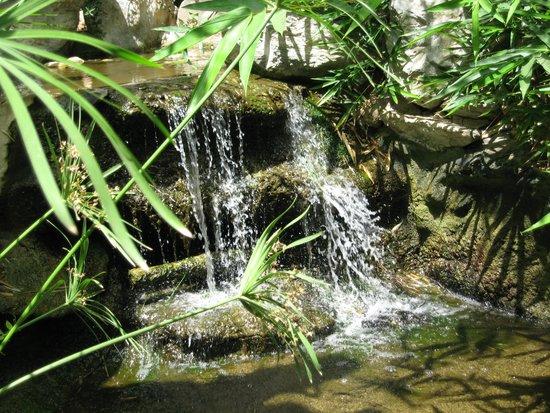 Atrium Palace Thalasso Spa Resort & Villas: На территории