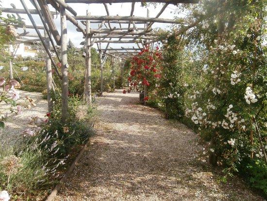 Giardino della Rosa: Veduta