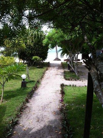 Phangan Beach Resort : Weg zum Strand vom Bungalow ohne Meerblick