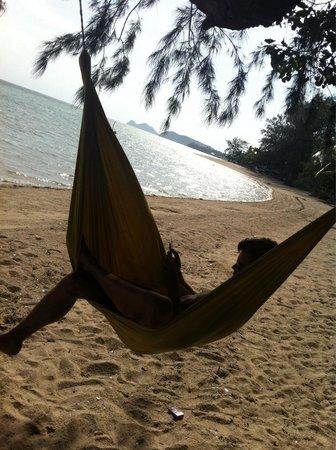 Phangan Beach Resort: Hängematte