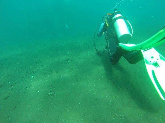Bali Scuba Masters: Following my dive instructor.