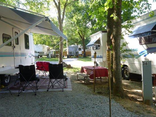 Cooper Creek Resort and RV Park: Very close RV sites