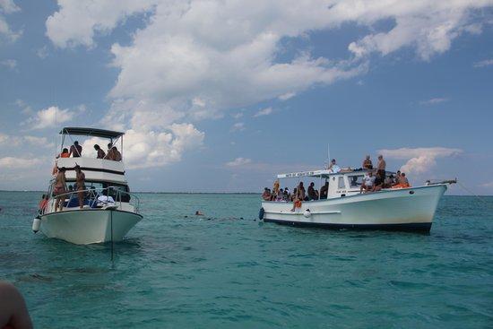 Acquarius Sea Tours : 429ramblerru2007