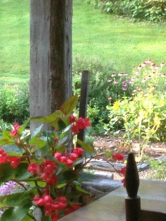 Butterfly Hollow - A Hidden Retreat: Porch view