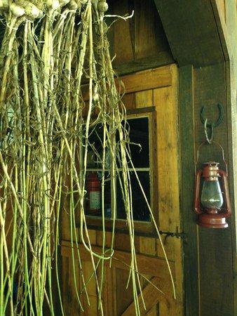 Butterfly Hollow - A Hidden Retreat : garlic drying
