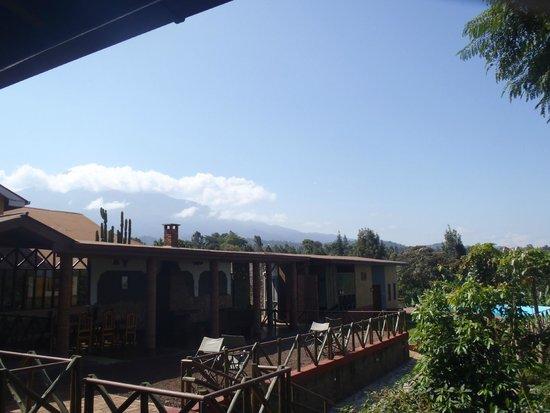 Ambureni Coffee Lodge: View on Mont Meru