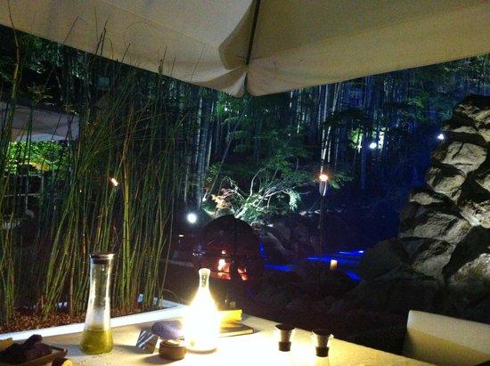 Minamioguni-machi, Japón: Jardin la nuit