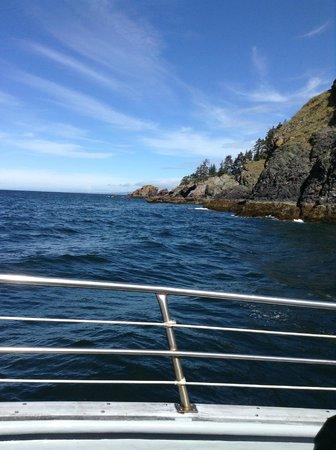 Rainbow Tours: Yukon island from Rainbow tour boat