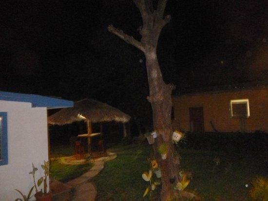 Latina Hostal: more outdoor pics.  beautiful hostel