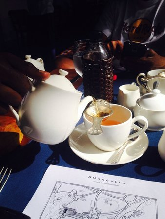 Amangalla : The perfect cuppa - being spoilt at breakfast !!