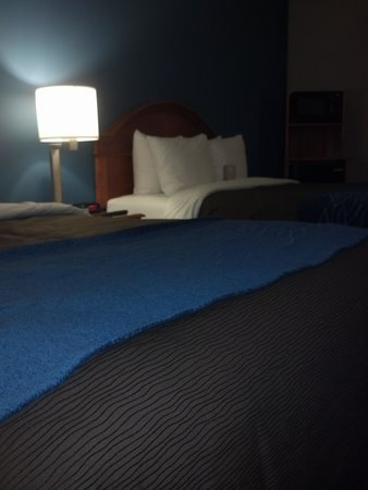 Comfort Inn & Suites: beds were very nice!