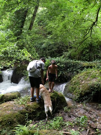 Agriturismo Bed and Breakfast Tana dei Lupi: Escursione guidata insieme agli ospiti Parco Tana dei Lupi
