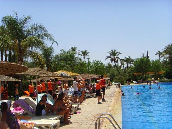 Club Palmeraie Marrakesh: animations prés de la piscine