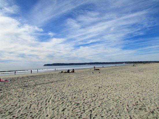 Coronado Municipal Beach: Praia de Coronado