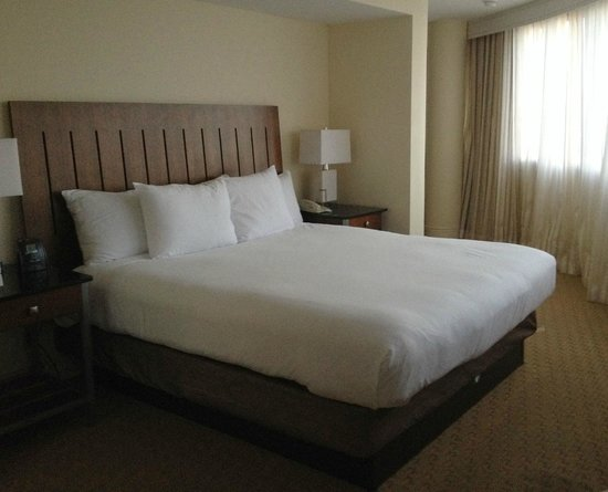Hilton Miami Airport : King-sized Bed