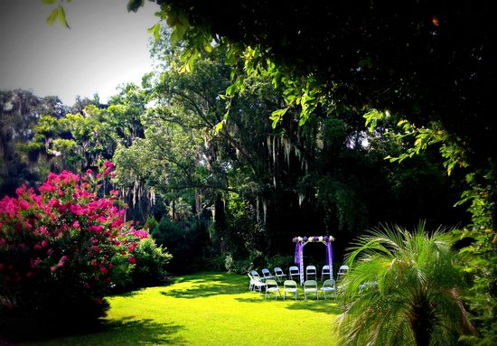 Herlong Mansion Bed and Breakfast Inn: Under The Spanish Moss