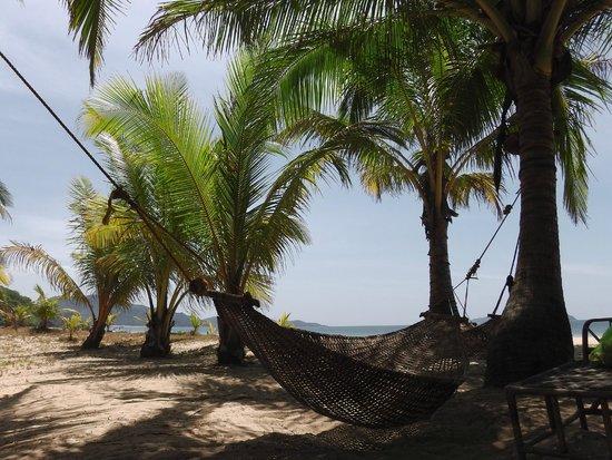 Verde Safari: The best hammock
