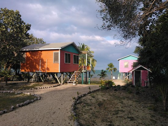 Jungle Jeanie's by the Sea : View from the Turtle South