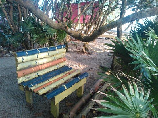 Jungle Jeanie's by the Sea : Garden
