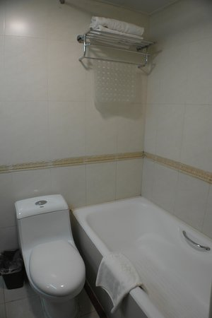 Lusongyuan Hotel: The bathroom
