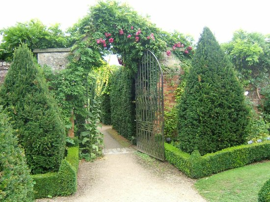 Abbey House Gardens: Hedging