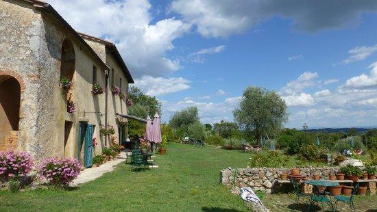 B&B La Canonica di San Michele : Terrasse
