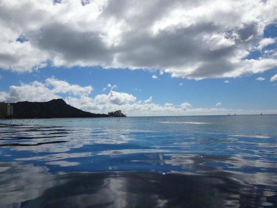 Sheraton Waikiki : 防水携帯で撮ったインフィニティプールです。海との一体感が素敵です。