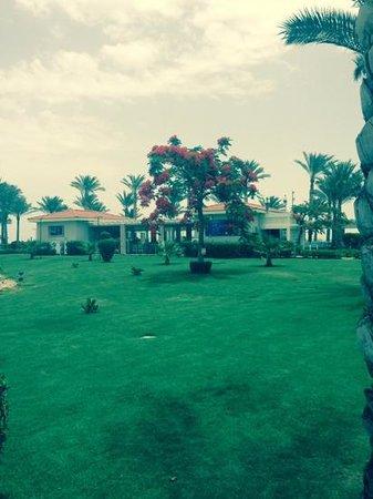 Rixos Sharm El Sheikh: beach/seafood restaurant