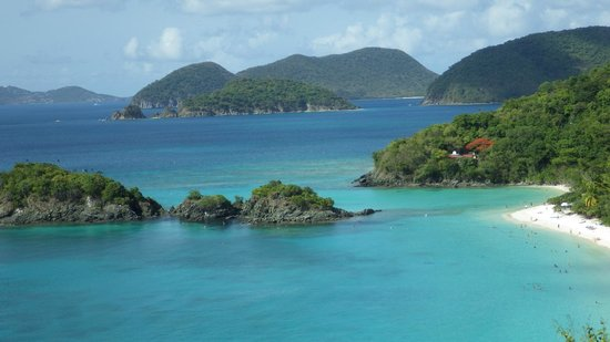 Trunk Bay : the reef