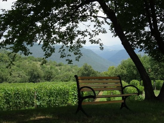 Agriturismo Delo Relais: Sit on the bench, have a glass of wine and soak up the view