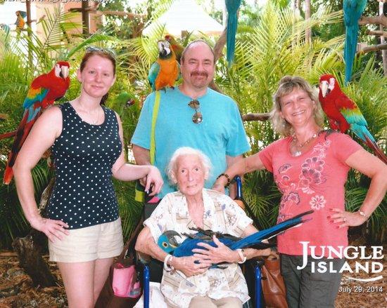 Jungle Island: Birds and Family