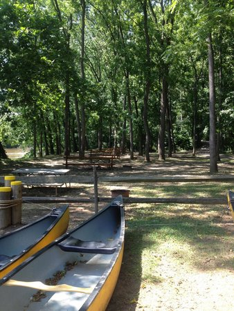 Philadelphia / West Chester KOA: view of our campsite from the canoe rental