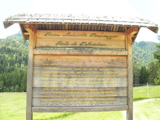Parco Paneveggio - Pale di San Martino : pannelli nel parco