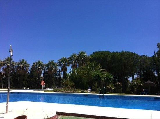 Hotel TRH Paraiso Costa del Sol: From sunbed