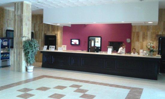 Hotel TRH Paraiso Costa del Sol: Reception