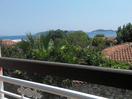 Hotel Esperides: Под балконом растут фруктовые деревья(мандарины,лимоны,сливы..)