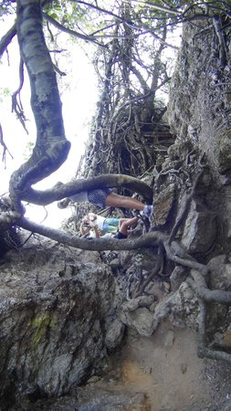 Mount Christoffel : A subida