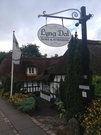 Lyng Dal Hotel