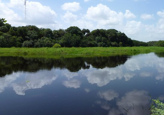 Myakka River State Park: stunning views
