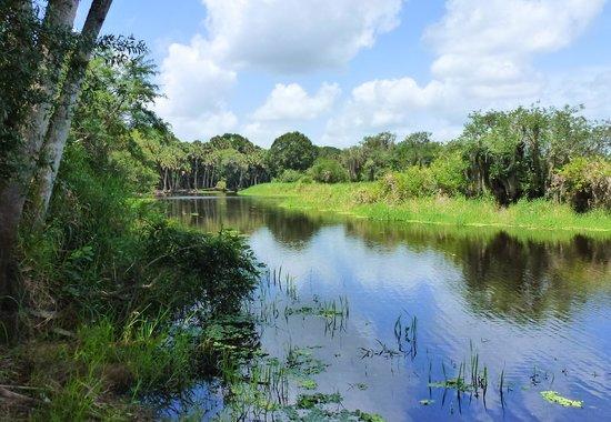 Myakka River State Park: so peaceful