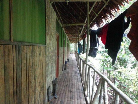 Otorongo Expeditions Jungle Lodge : The walkway around the lodge.