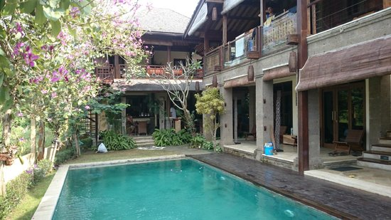 Stormrider Surfcamp Bali: A piscina