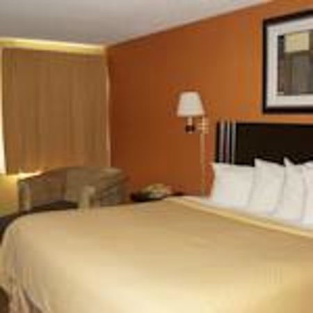 Quality Inn Merrillville: Single King Bed