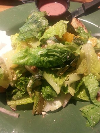 Quaker Steak & Lube: The biker chick salad, wilted lettuce and over cooked chicken. Just terrible
