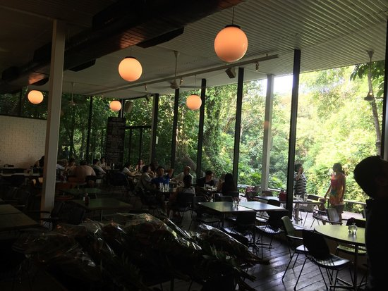 PS Cafe: In the middle of the jungle!